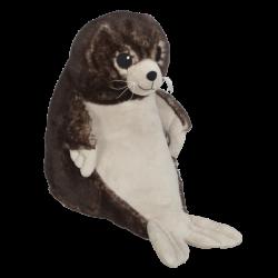 Cecil Sea Lion (Seal)